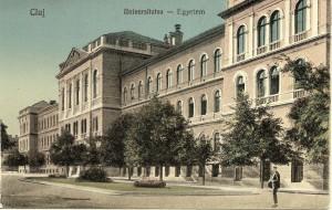muzeu istorie ubb