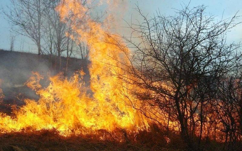 IGSU: creștere alarmantă a numărului de incendii