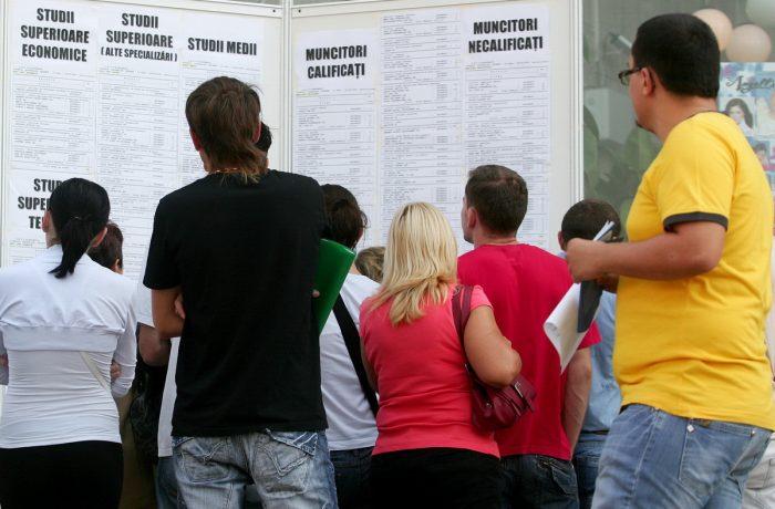 Numărul șomerilor din județ a scăzut la 1,9%, potrivit AJOFM Cluj