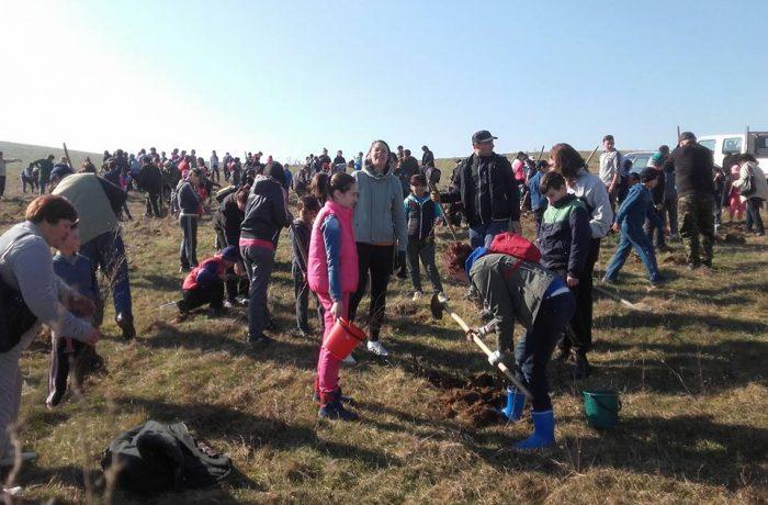 """""""Ziua Voluntarilor Mici"""", în comuna Mica"""