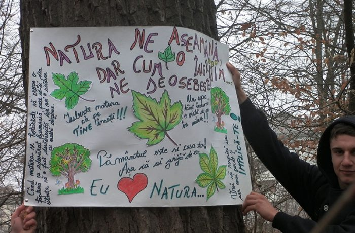 ECO JUNIOR 2017 și Ștafeta Munților