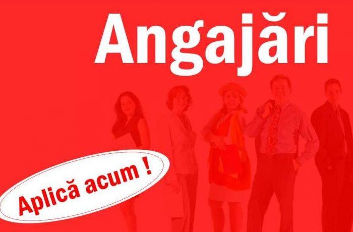 Două posturi scoase la concurs de Primăria Mica, județul Cluj