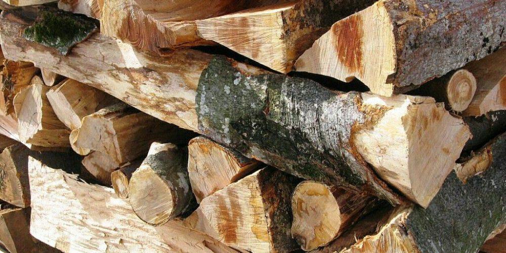 La iarnă, mai puține lemne de foc pentru populație