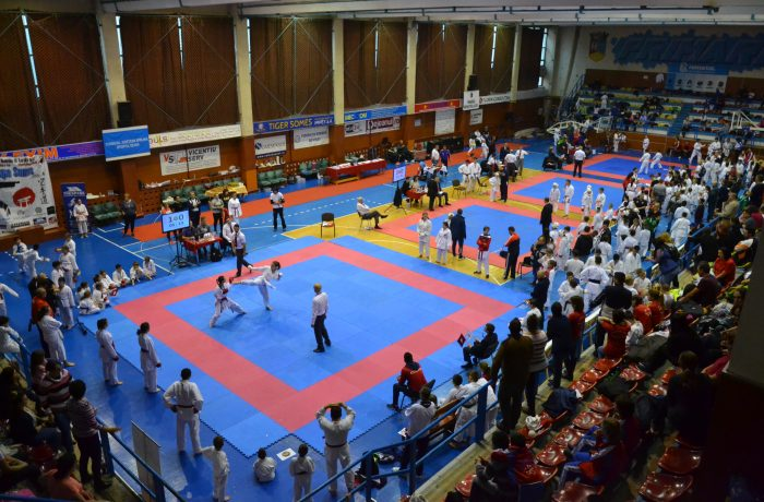 27 de medalii pentru CS Budokan Ryu, la Cupa SAMUS, ediția 2017
