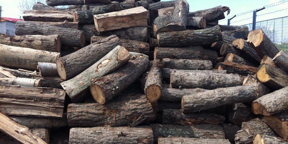 Operațiunile cu material lemnos, verificate de Poliția Română