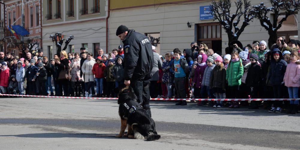 """Caravana Porți Deschise""  a popsit la Dej"
