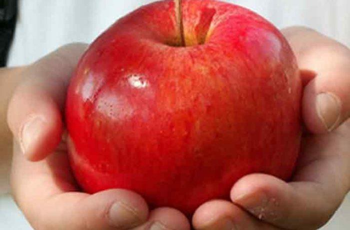 Fructe şi legume proaspete pentru elevi