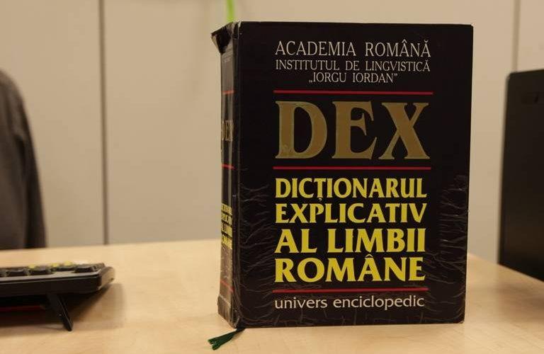Guvernul României învață să scrie și să vorbească… românește!