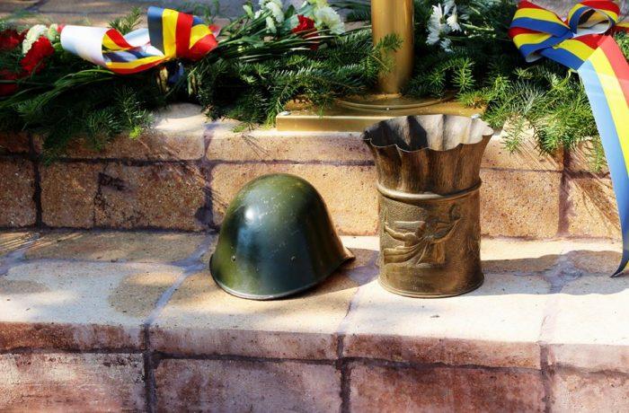 """Divizia 4 Infanterie Gemina: """"O sută de oameni pentru Centenar"""""""