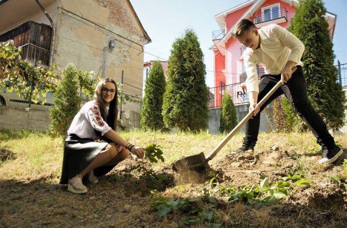 """Ziua Internaţională a Păcii, a fost sărbătorită la Liceul Teoretic """"Al. Papiu Ilarian"""" Dej"""