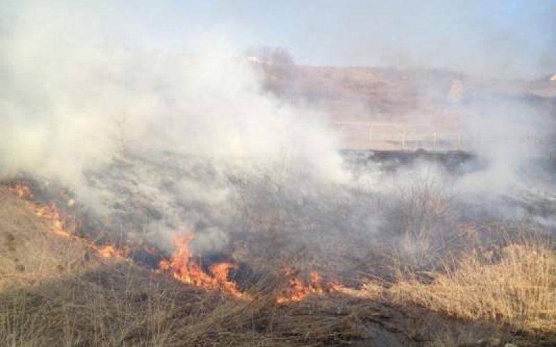 Persoanele fizice și juridice care incendiază vegetație uscată pot primi amenzi de la 3.000 la 50.000 de lei