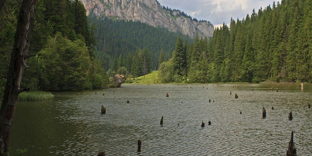 De văzut:  Lacul Roșu și Cheile Bicazului