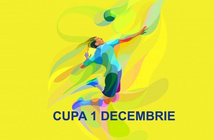 """""""Cupa 1 Decembrie"""" la volei old boys, cu veteranii din Dej la fileu"""