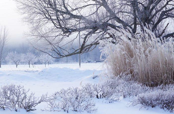 Prognoza meteo pentru luna februarie arată o răcire a temperaturilor