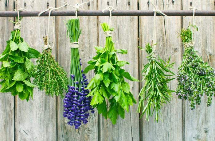 Cinci condimente benefice pentru sănătate
