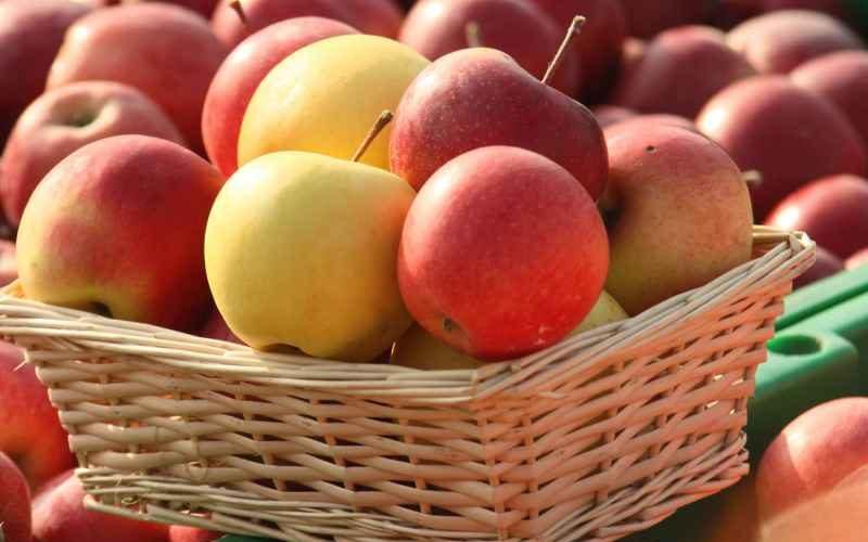 Se licitează contractele pentru furnizarea de mere în şcoli
