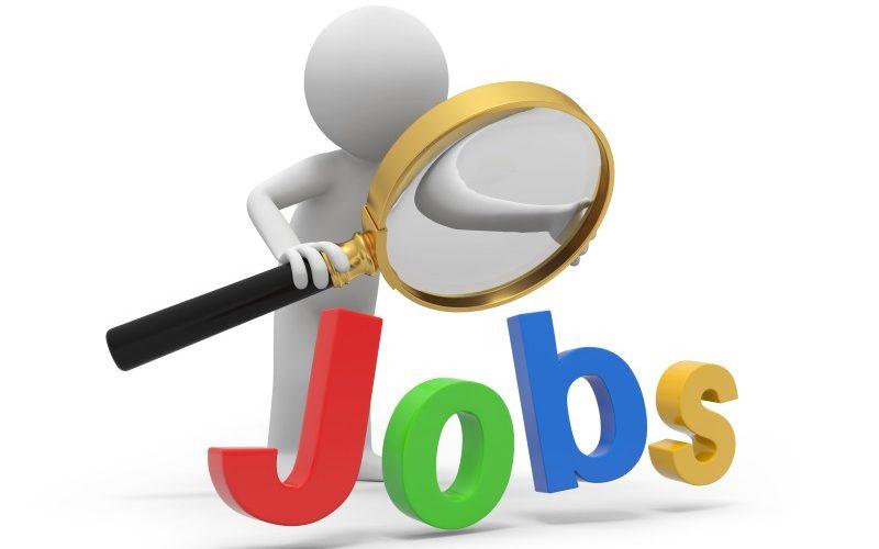 Studiu  eJobs: Ce așteptări salariale au românii ?