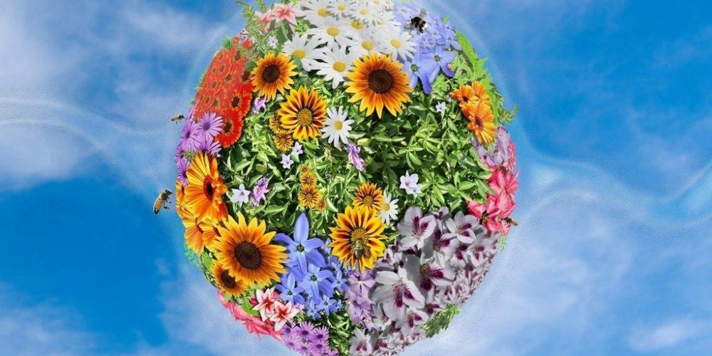 Luna lui Florar, obiceiuri și tradiții