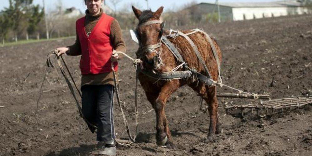 România,  țara bogată, cu oameni săraci!