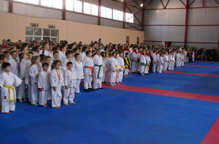 Primele medalii din acest an pentru sportivii de la Budokan Ryu