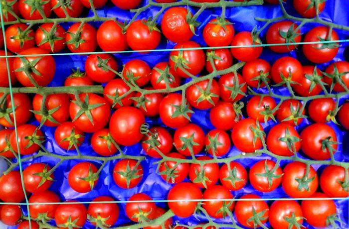 Din verzi se fac roșii peste noapte!