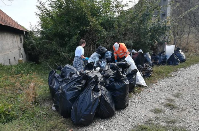 "Șase sute de dejeni la acțiunea ""Let's Do It, Romania!"""