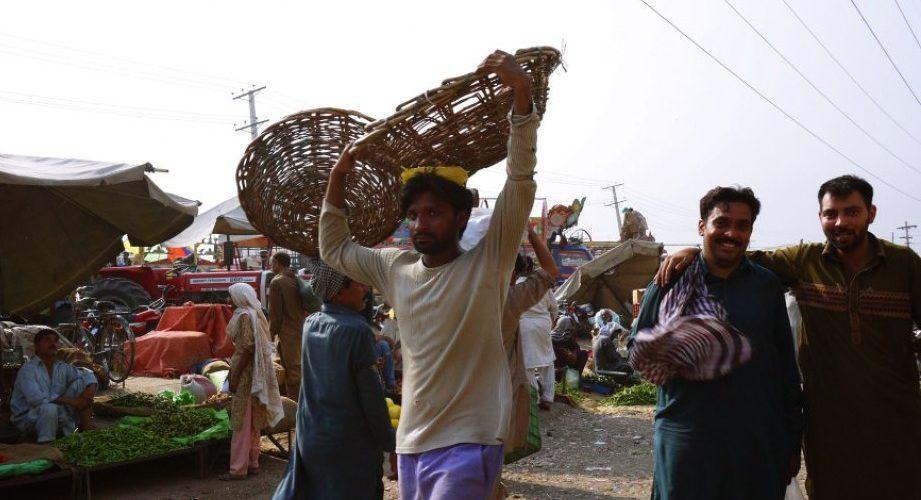 Guvernul NEAGĂ că ar vrea să aducă în țară 500.000 de muncitori pakistanezi