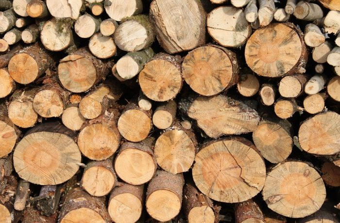 Romsilva recomandă populației să se aprovizioneze din timp cu lemne pentru foc