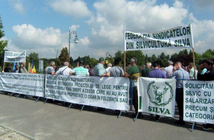 Sindicaliștii din silvicultură se pregătesc de protest