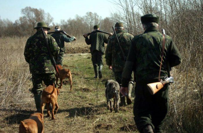 Personalul silvic poate face uz de armă pentru îndeplinirea sarcinilor de serviciu, în condiţiile legii
