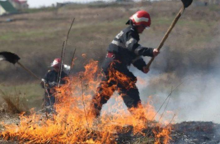 Incendiu puternic de vegetație în zona Tăuți, comuna Florești