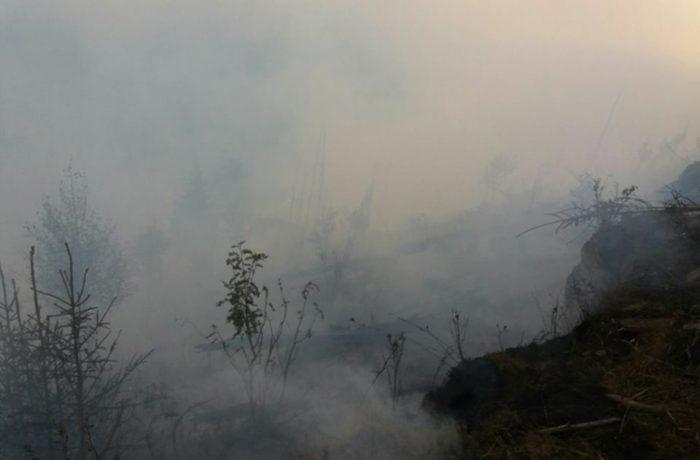 Incendiu de pădure la Băișoara