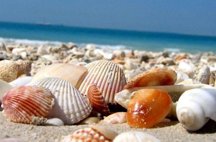 Cum va fi turismul, anul acesta, pe litoralul românesc?